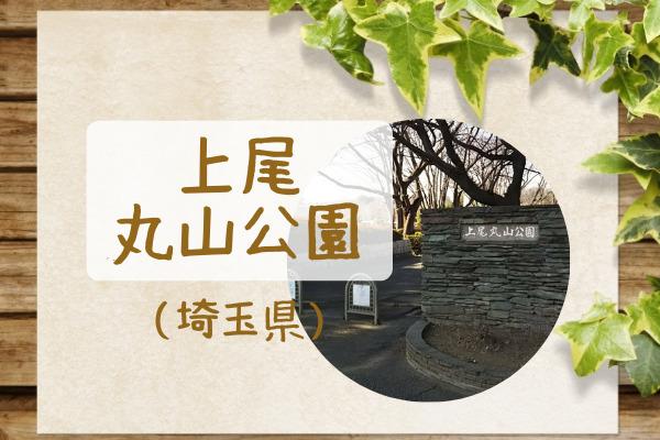 上尾丸山公園アイキャッチ