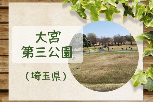 大宮第三公園アイキャッチ