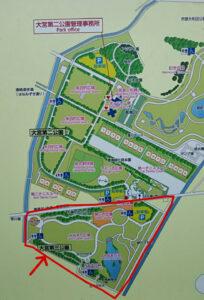 大宮第三公園8 (1)