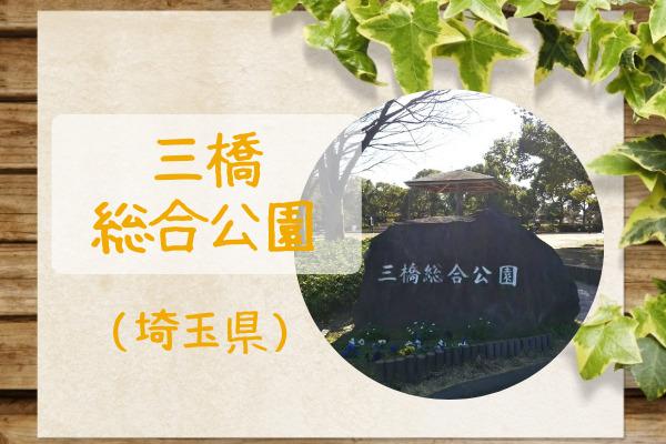 三橋総合公園アイキャッチ